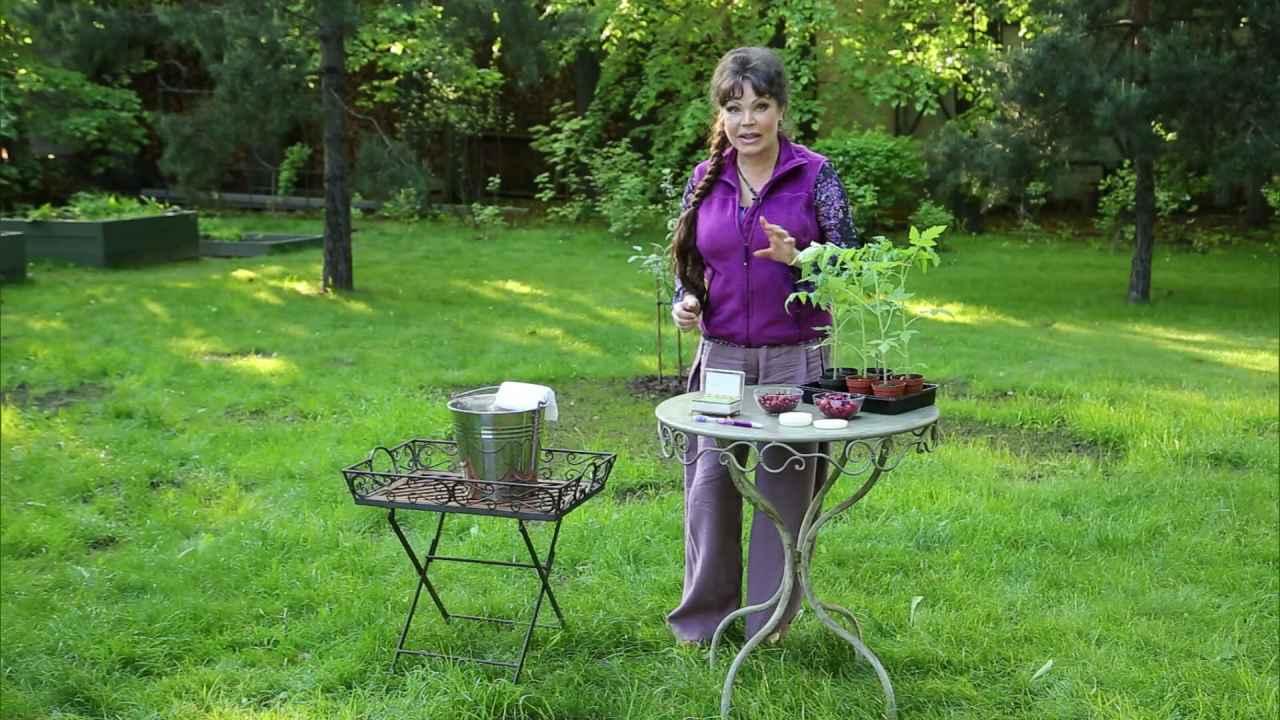 Как ухаживать за руками садовода