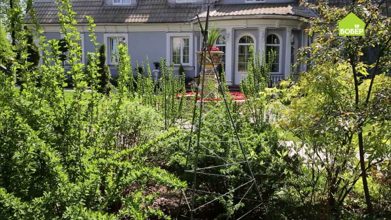 Опора для плетистых растений из арматуры