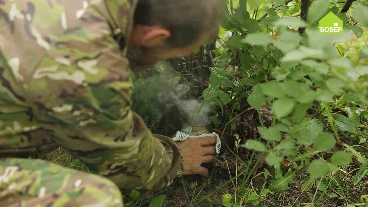 Дымовая шашка против садового клеща