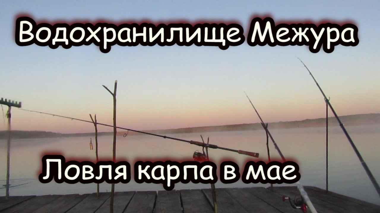 Рыбалка. Рыбхоз Межура