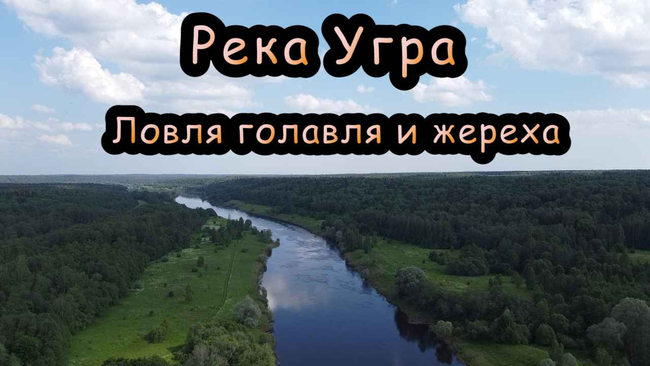 Река Угра. Ловля белого хищника