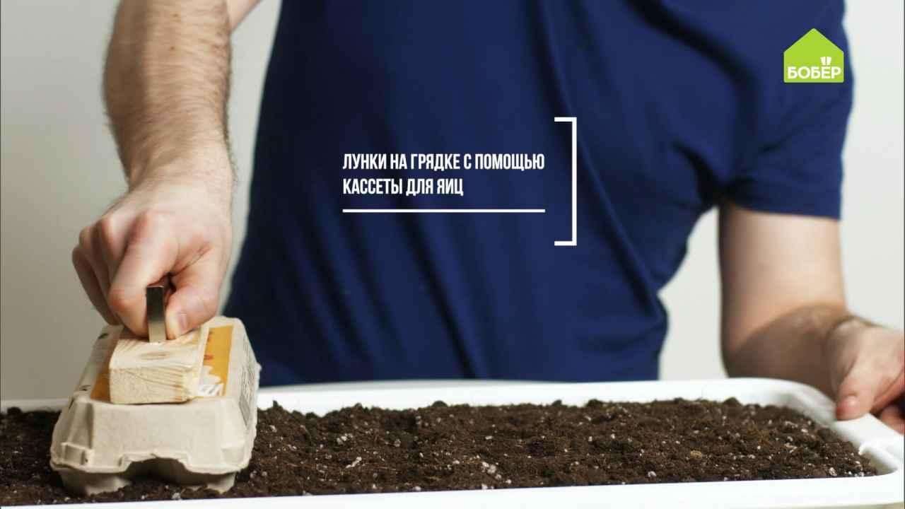 Лайфхаки дачные: украшаем сад и сажаем семена